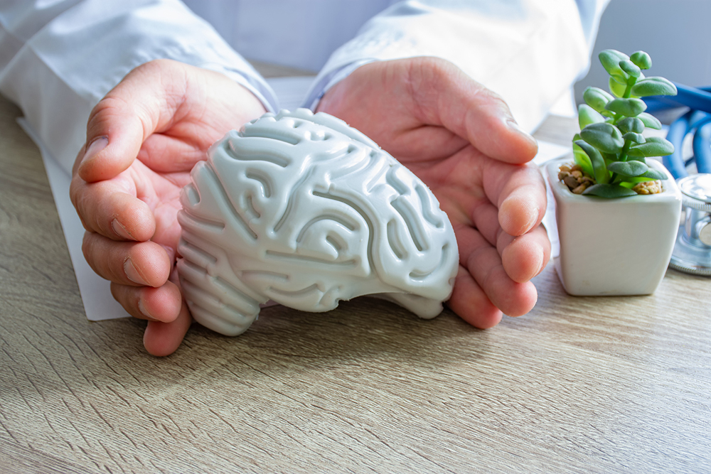 Protection, treatment, prevention and patronage health in neurology in brain health against diseases, pathologies concept photo. Doctor surrounded figure of human brain shape with hands on desk